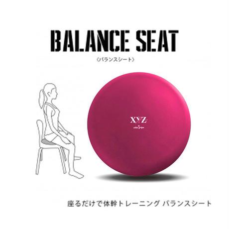 XYZ バランスシート ピンク eltg-001