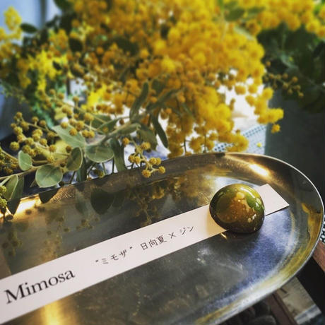 JHOICE chocolat selection 5PBox 『mimosa 』