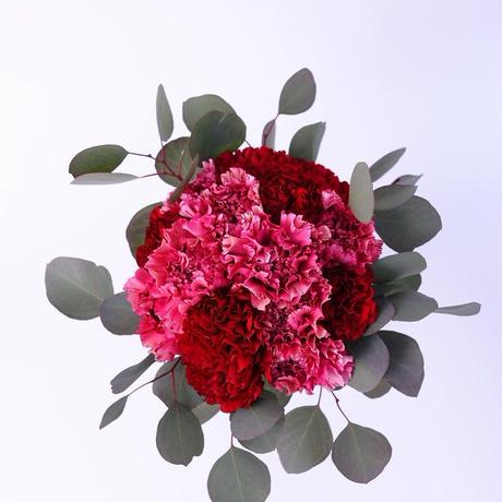 母の日 カーネーション花束