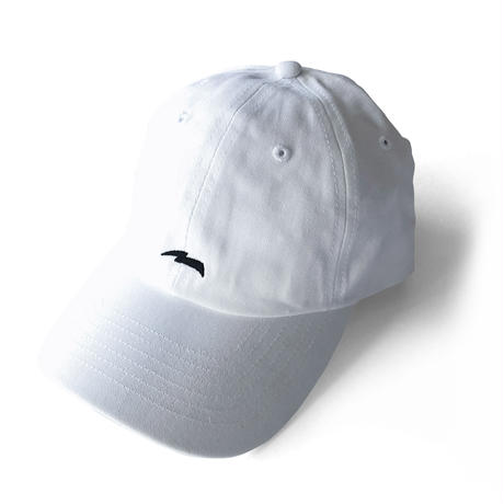 【数量限定】LIGHTNING LOW CAP