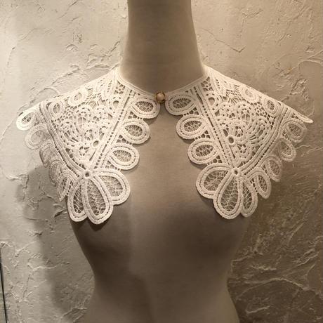 wearing collar 15[AA212]