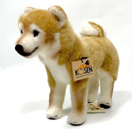 KOSEN柴犬