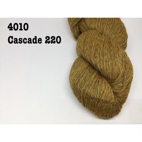 [Cascade] Cascade 220 - 4010(Straw)