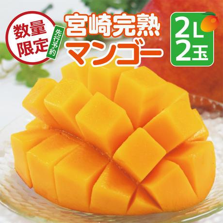 【先行予約】令和4年5月発送「宮崎完熟マンゴー」2Lサイズ×2パック