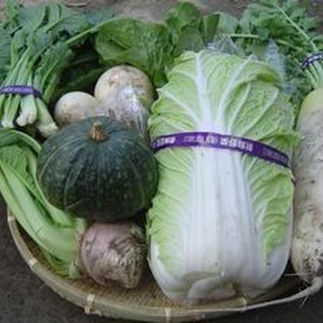 旬の無農薬野菜セット L (関東・東海・関西のみ)