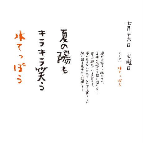 【予約販売商品】かご猫575 ~2013年版~