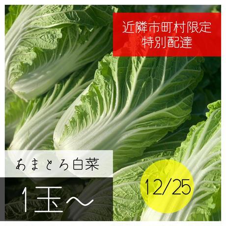 【お届け日12/25(金)】白菜配達※長野市周辺限定