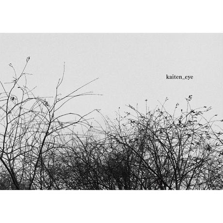 kaiten_eye (電子版)