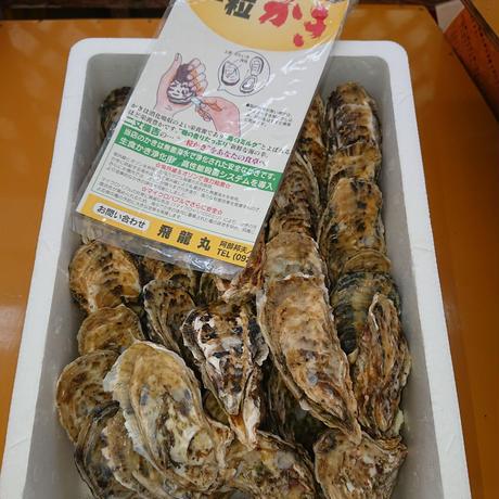 糸島・福吉産真牡蠣3キロ(殻付)