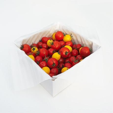 【送料無料】とまおとめ® 食べ比べ 1kg箱