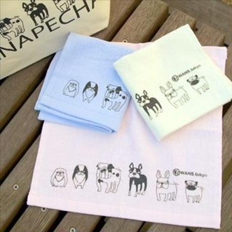鼻ぺちゃ犬6種タオルハンカチ
