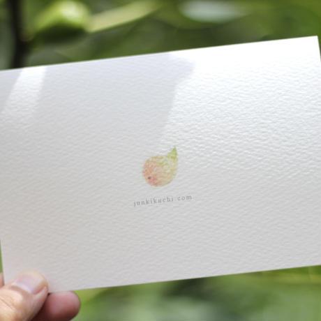 小鳥のカード「ヒヨドリ 」