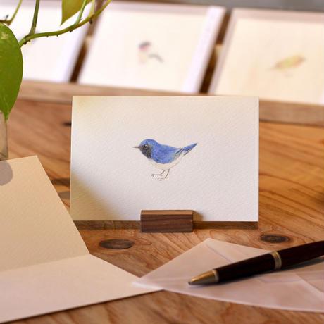 小鳥のカード「オオルリ 」