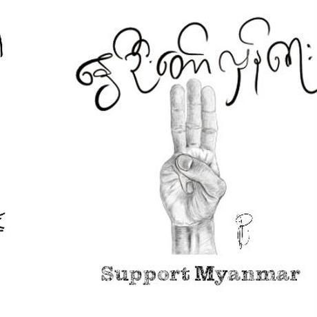 ■6本セット■Myanmar Support BEER PROJECT