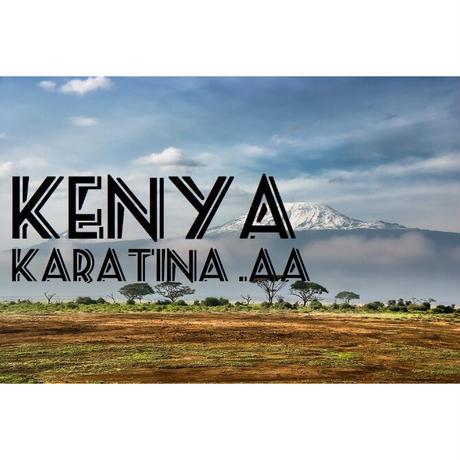 【100g】ケニア カラティナ AA (中煎り)
