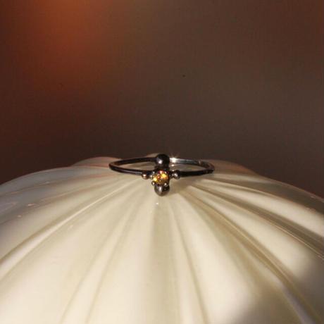 Ant Ring (siseM)