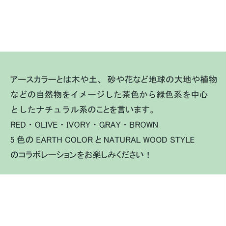 EARTH COLOR 抗菌マグ RED