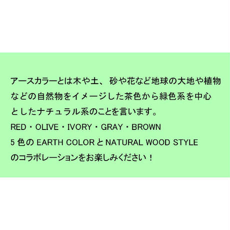 EARTH COLOR 抗菌ランチプレート RED