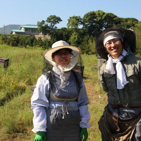 【和歌山紀の川市 村上養蜂のほんまもん蜂蜜】みかんはちみつ-スティックタイプ