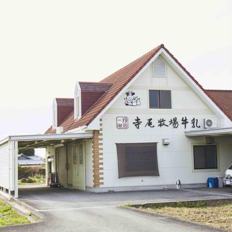 海南市 寺尾牧場ミルクキャラメルポップコーン(カップ)