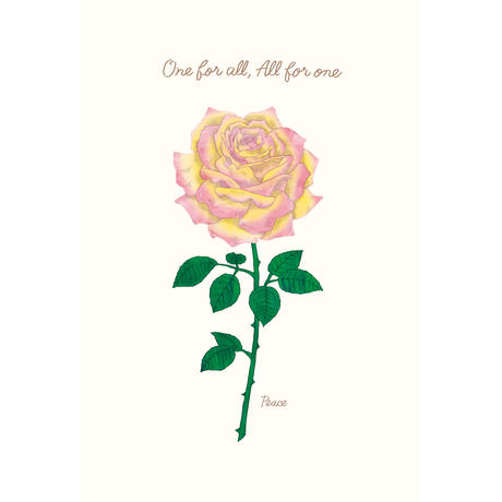 【THE GARDEN】殿堂入りのバラポストカード 全7種