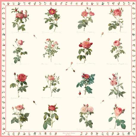 【ルドゥーテ】バラ図譜セレクショネ16 各色