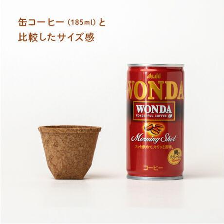 もぐカップ チョコ味 Sサイズ 10個入