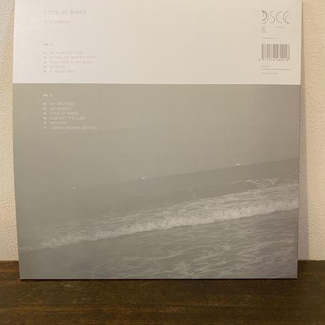 LP「Lots of Birds」Koji Shibuya   【限定盤】