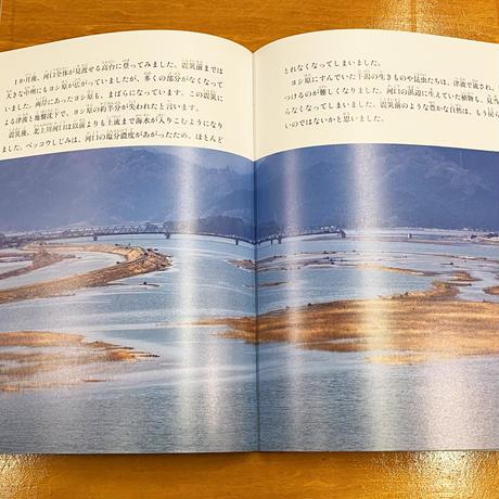 再入荷【サイン入り】海と川が生んだたからもの 北上川のヨシ原 たくさんのふしぎ2021年3月号