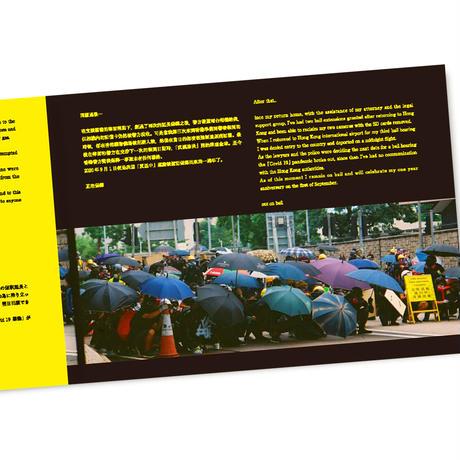 HONG KONG POLITICAL GRAFFITI & BUFF   2019年夏 香港民主化デモ 逮捕された記録