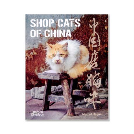 中国店貓咪