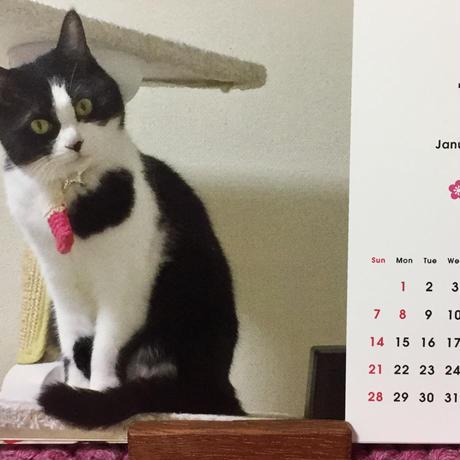 2匹の猫通信 ハッチとマックのカレンダー2018 送料込み