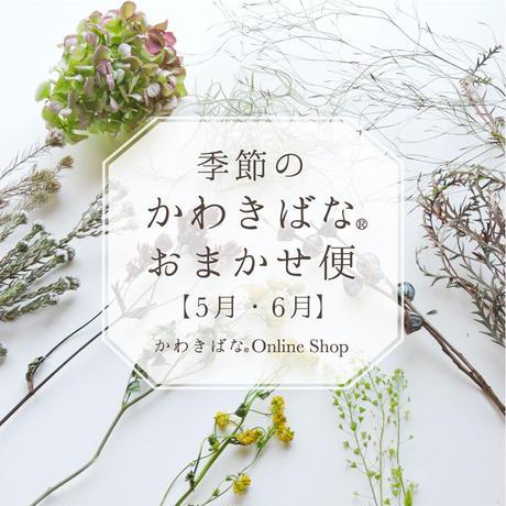 【5月・6月】季節のかわきばな®おまかせ便(2回お届け)