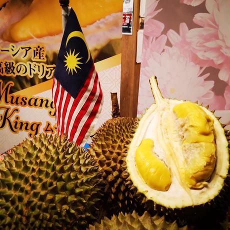 マレーシア産 完熟フレッシュドリアン 猫山王 約2.0kgサイズ