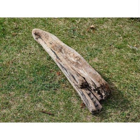 ●国内産 流木(I)43cm