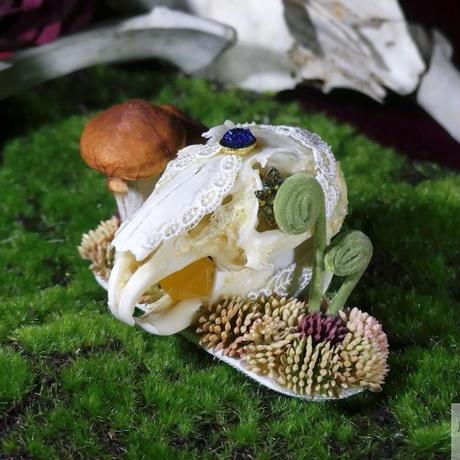 ウサギ頭骨のヘッドドレス