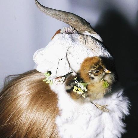 ヒヨコと頭骨のカチューシャ