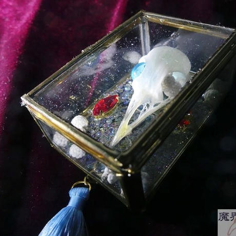 硝子標本箱の頭骨ブローチ(中)ヒヨドリ