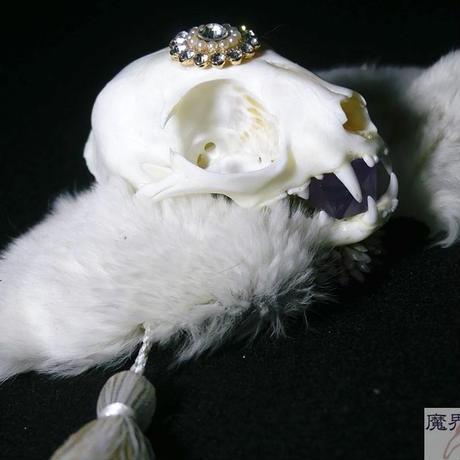 ネコの頭骨ヘッドドレス B