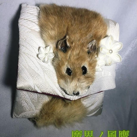 ネズミのコインケース