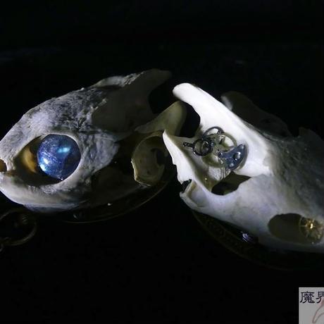 カメの頭骨と歯車のブローチ