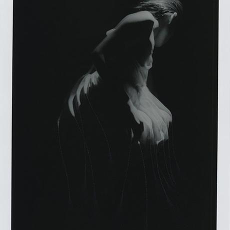 """""""wonderland"""" 22/88"""