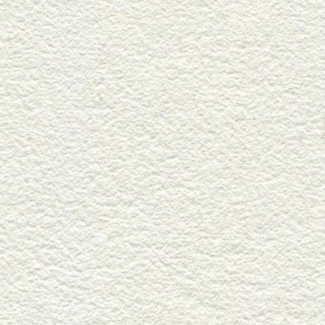 PALE TONE (本革)  - WHITE