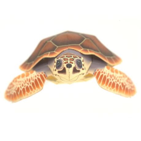 アカウミガメ:Loggerhead turtle(紙工作キット)