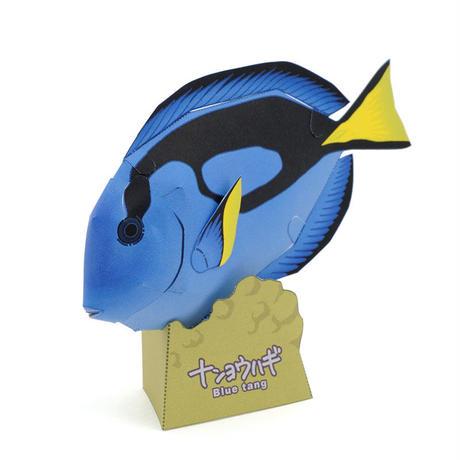 ナンヨウハギ:Blue tang(紙工作キット)