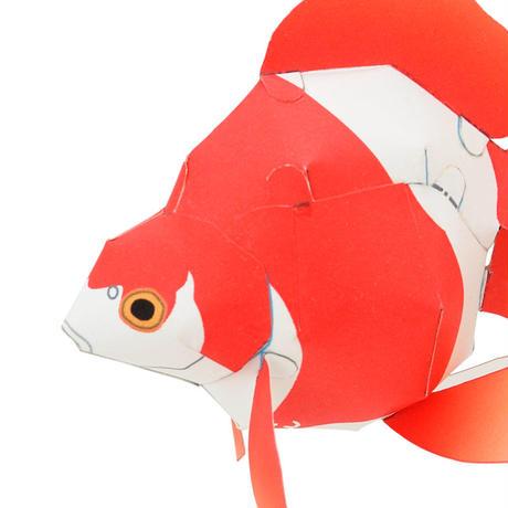 琉金:Ryukin(紙工作キット)