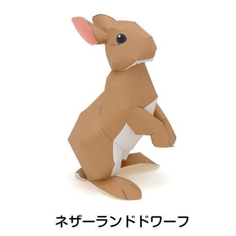 うさぎ:Rabbit(紙工作キット)