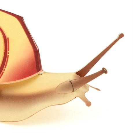 カタツムリ<クチベニマイマイ> : Snail < Euhadra amaliae >(紙工作キット)
