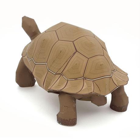 ガラパゴスゾウガメ:Giant Tortois      (紙工作キット)