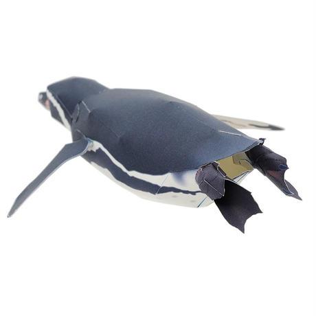 フンボルトペンギン:Humboldt Penguin(紙工作キット)